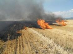 Doua-incendii-de-vegetatie-uscata-lichidate-de-pompierii-braileni