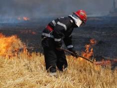 Incendiu-Vegetatie-660x330