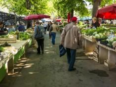 piata-legume_30655900