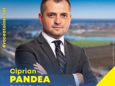 C02_Ciprian Pandea