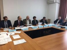 Filipescu comisia dezvoltare